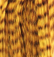 Tiger Trense extensions AAA Gul - ca 50 / 150cm